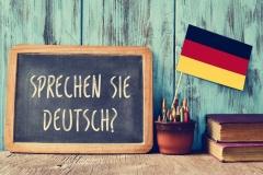 question sprechen sie deutsch? do you speak german?